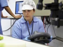 Puerros sobre cinta transportadora de máquina del sector alimentario, Planta Piloto, Azti-Tecnalia, Centro Tecnológico de Investigación Marina y Alimentaria, Derio, Bizkaia, Euskadi, Spain