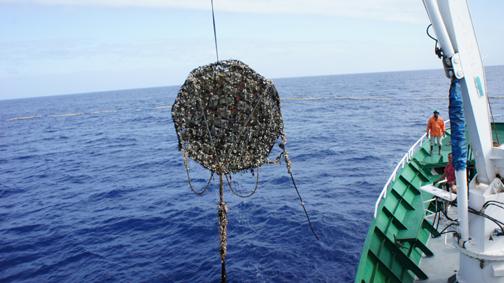 """""""BIOFAD"""" proyecto europeo coordinado por AZTI para probar materiales biodegradables en la construcción de Dispositivos Concentradores de Peces (DCPs) en el Océano Indico"""