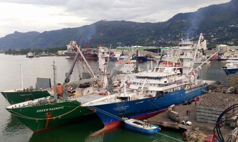 Oficina permanente en Seychelles para garantizar la sostenibilidad del atún en el Océano Índico