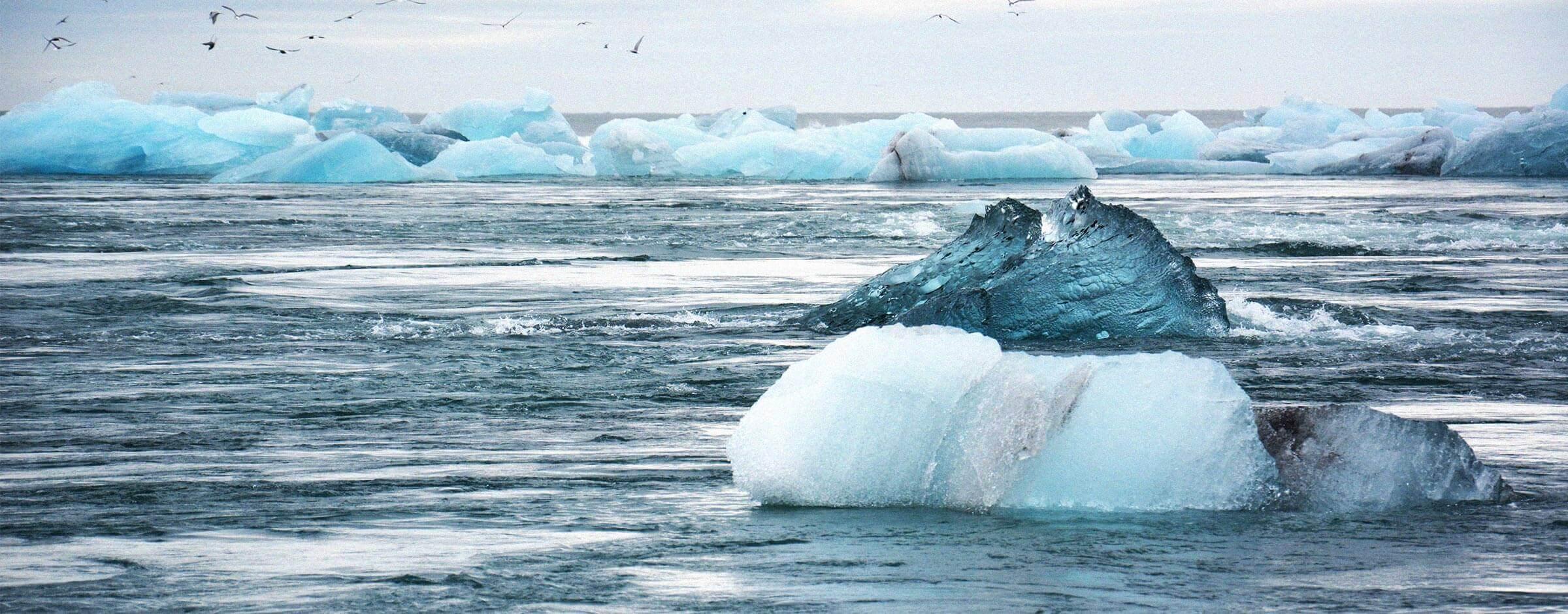 investigamos para conocer los efectos del cambio climático en el océano, la costa y los recursos marinos