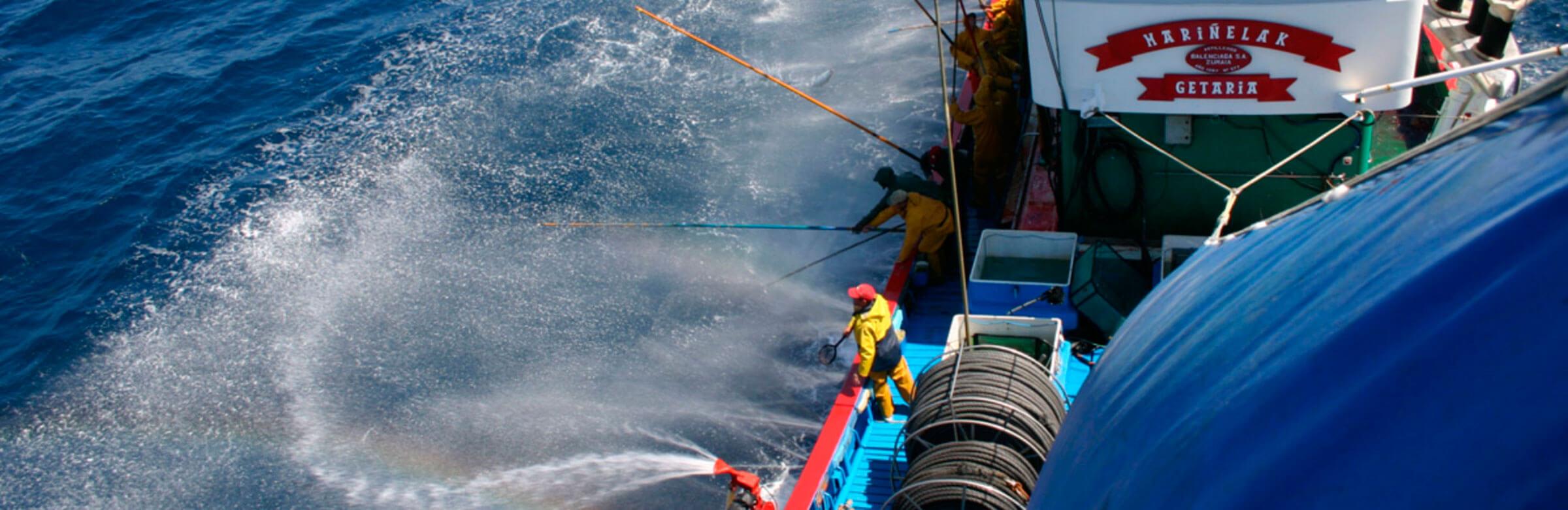 pescadores pesca sostenible y responsable