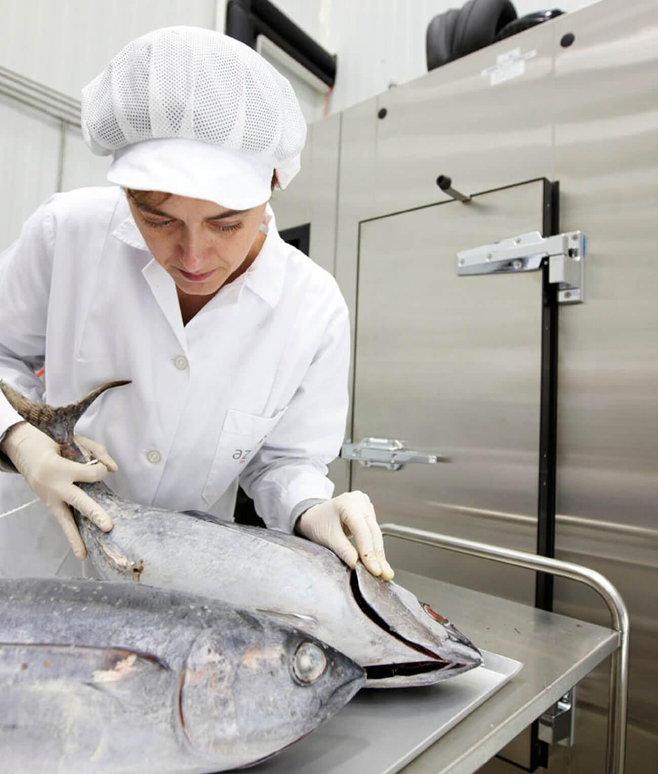 Científica trabajando con pescado