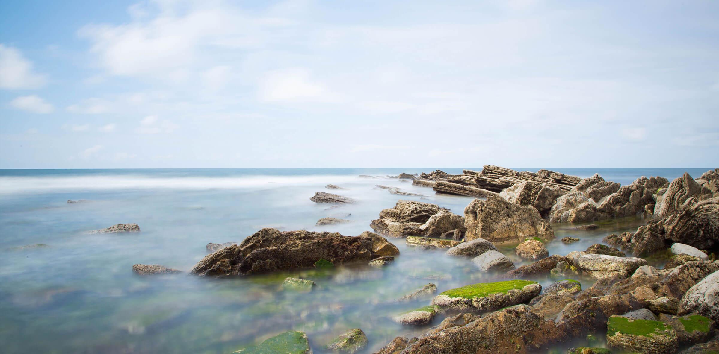 Costa con algas y rocas