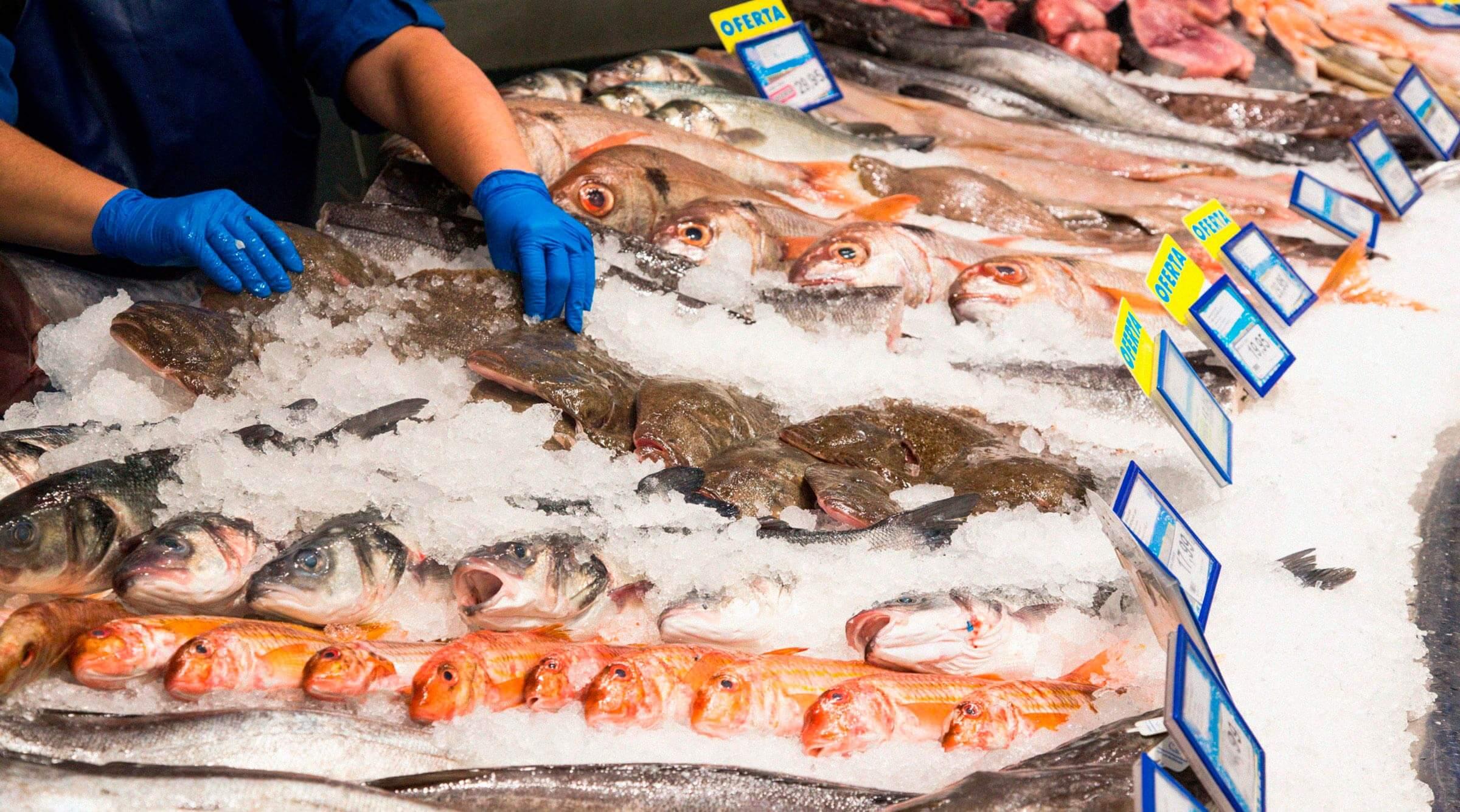 mano-pescaderia-hielo-identificacion-de-anisakis-en-productos-pesqueros-azti