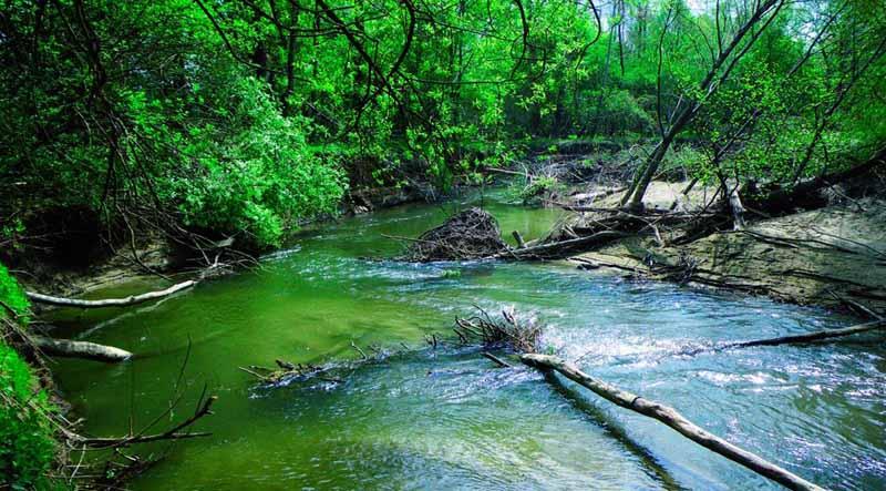 Impacto y calidad ambiental