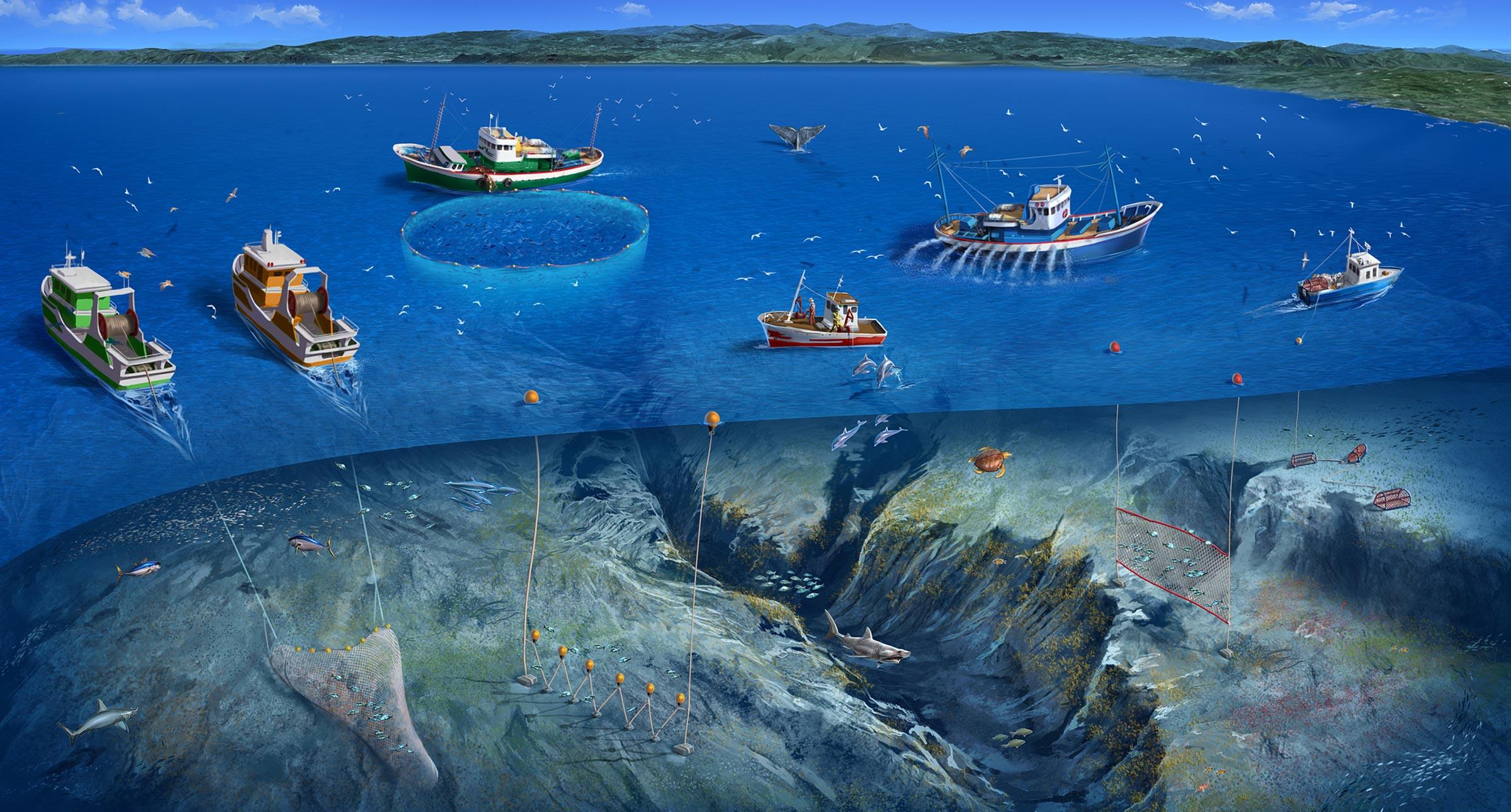 economía marina