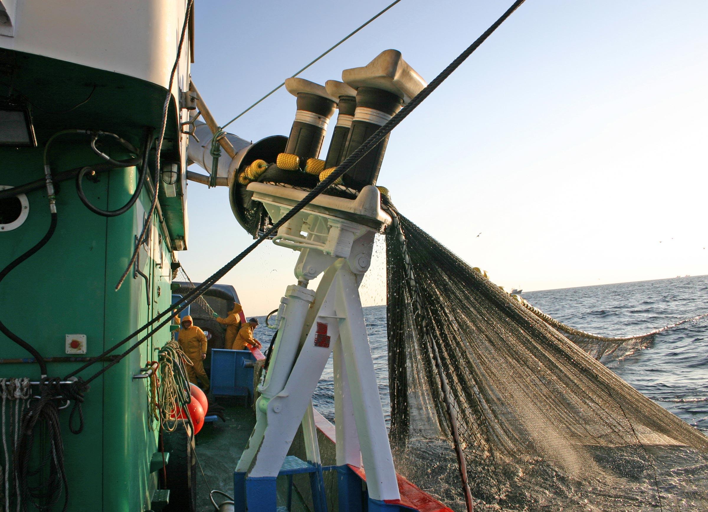 innovacion artes de pesca