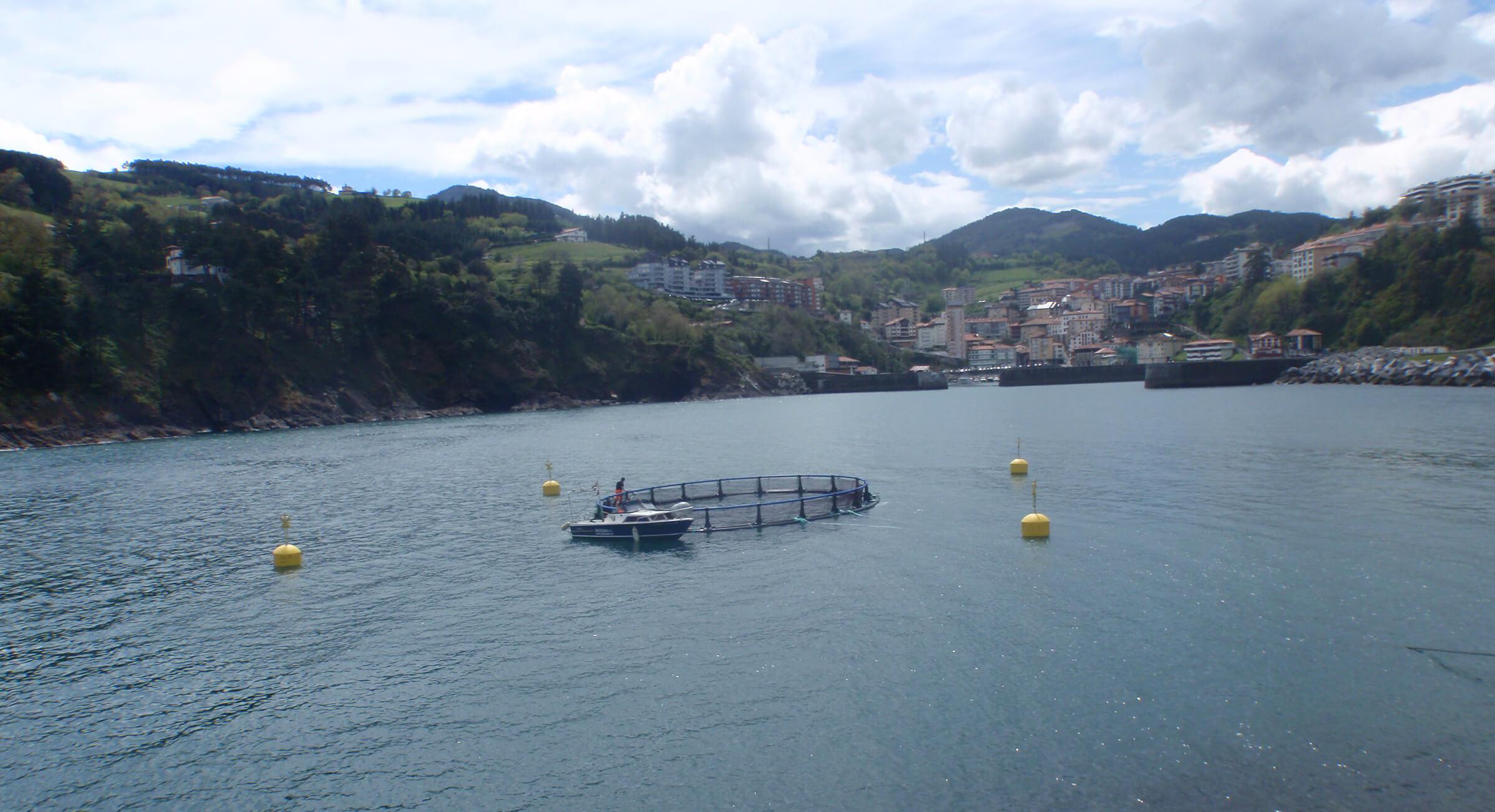 acuicultura en la mar