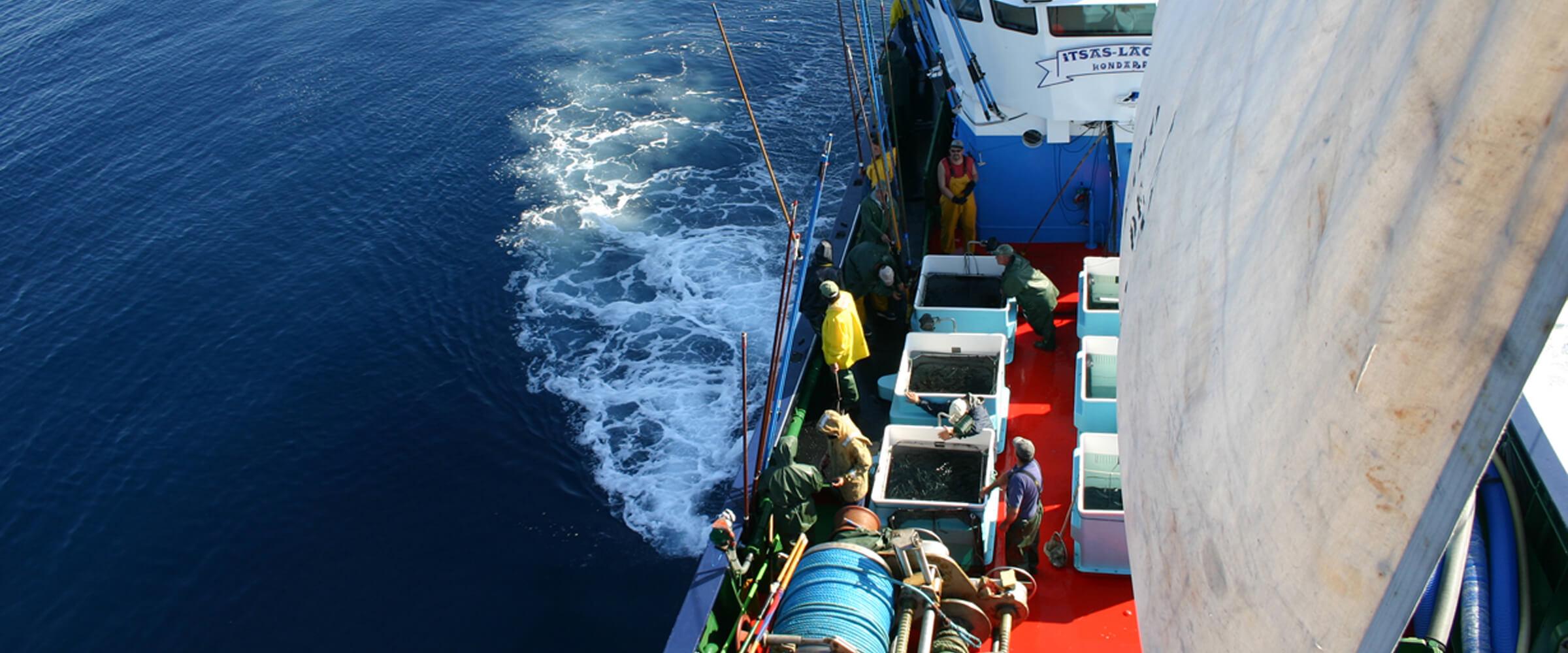 programa_muestreo_pesquerias