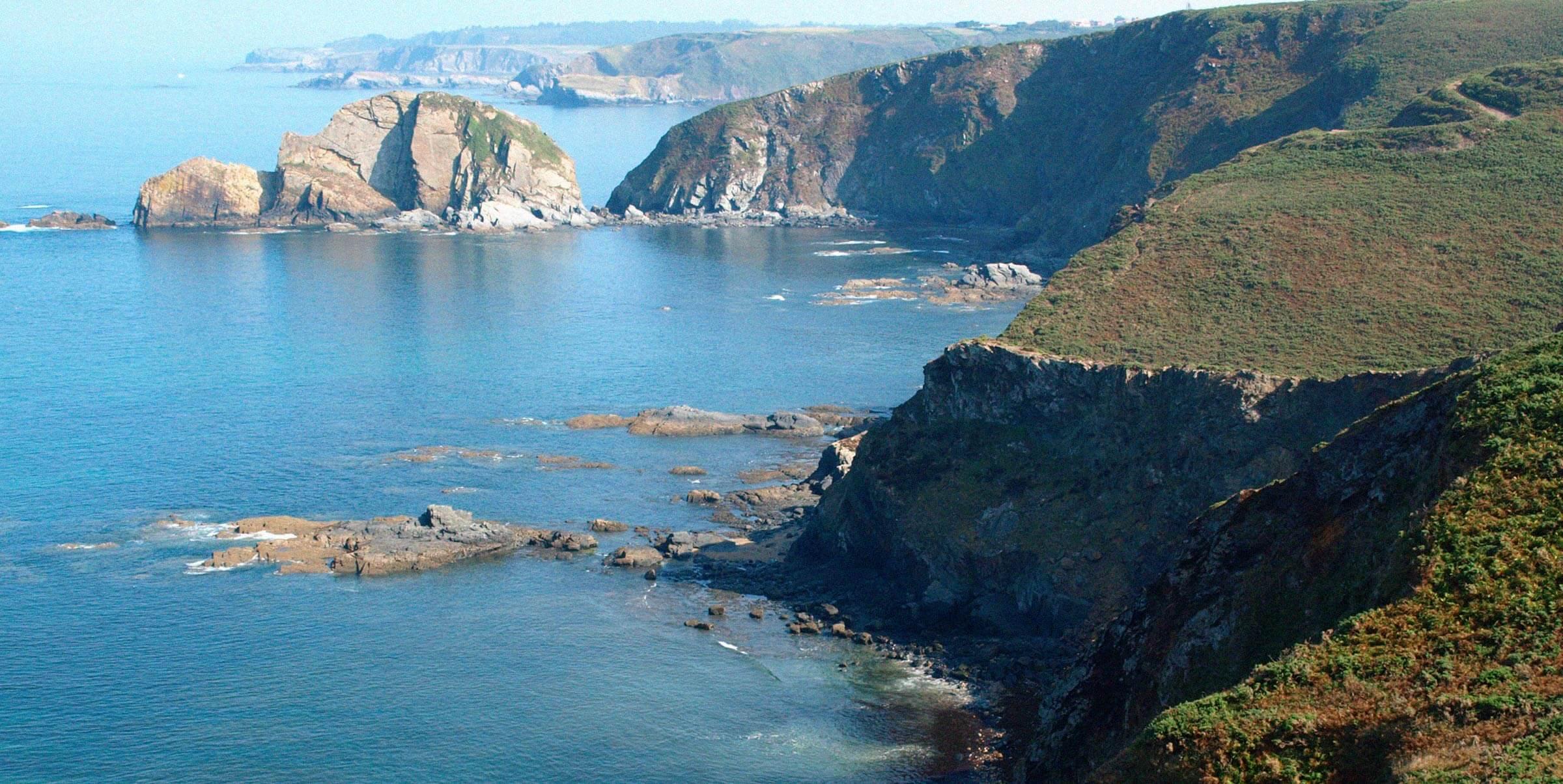 mesorec-mar-acantilado-funcionamiento-ecosistemas-marinos-azti
