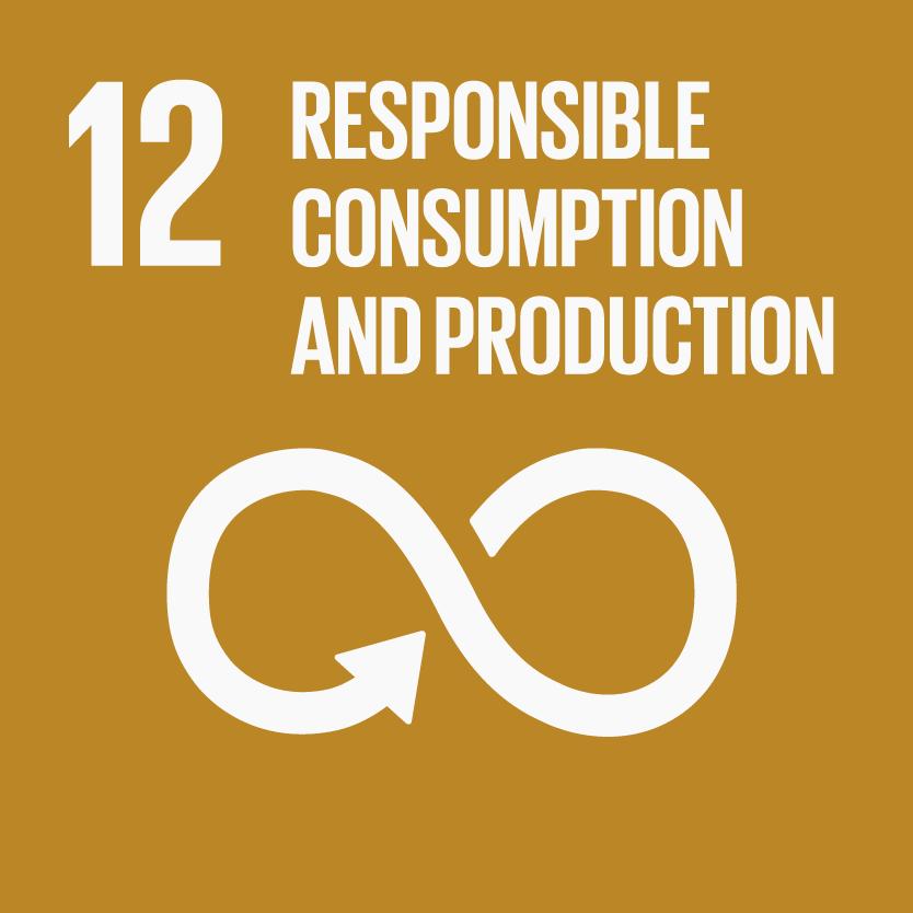 produccion-responsable ODS 12