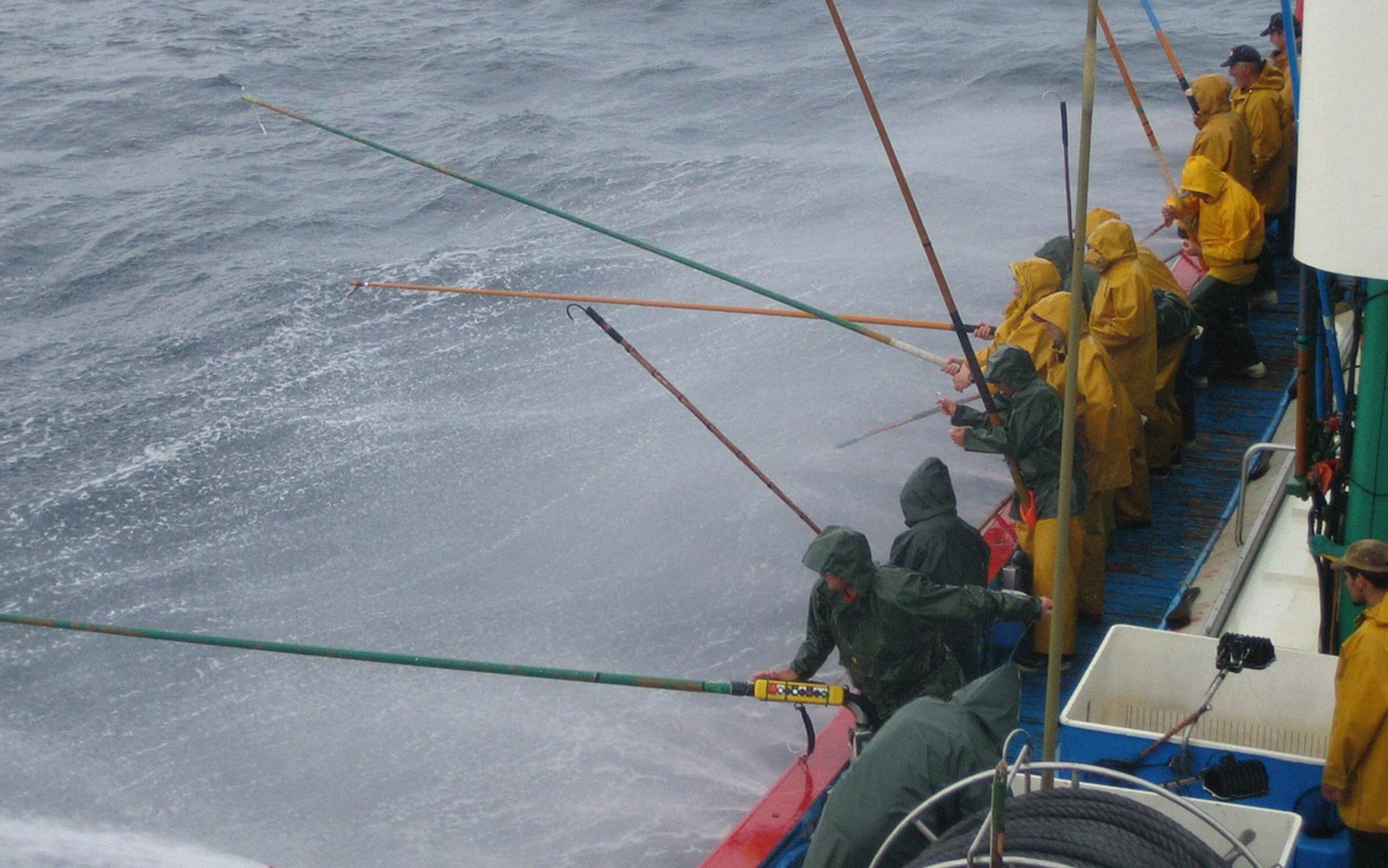 gestión pesquera sostenible