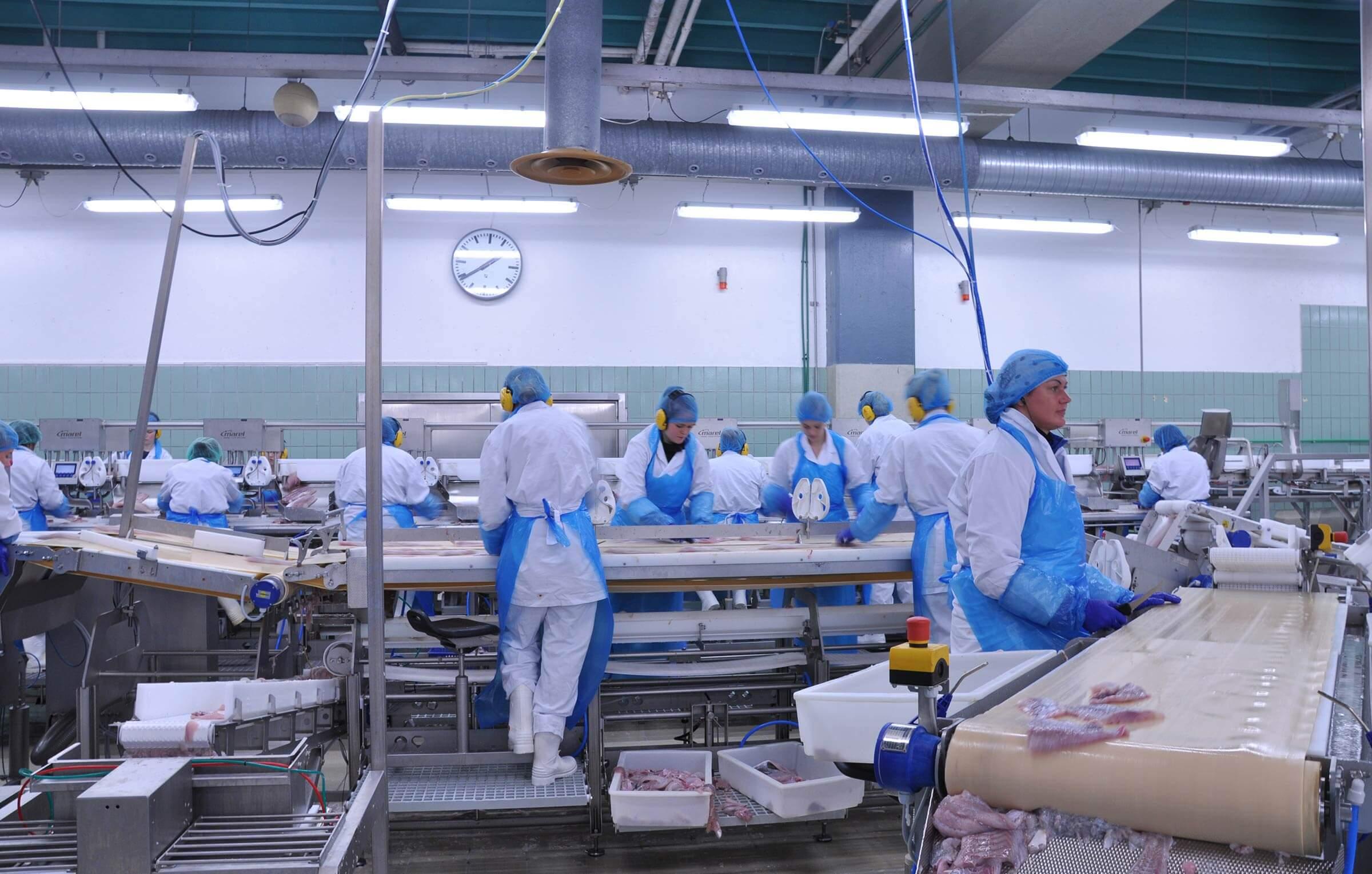 mujeres trabajando conservera