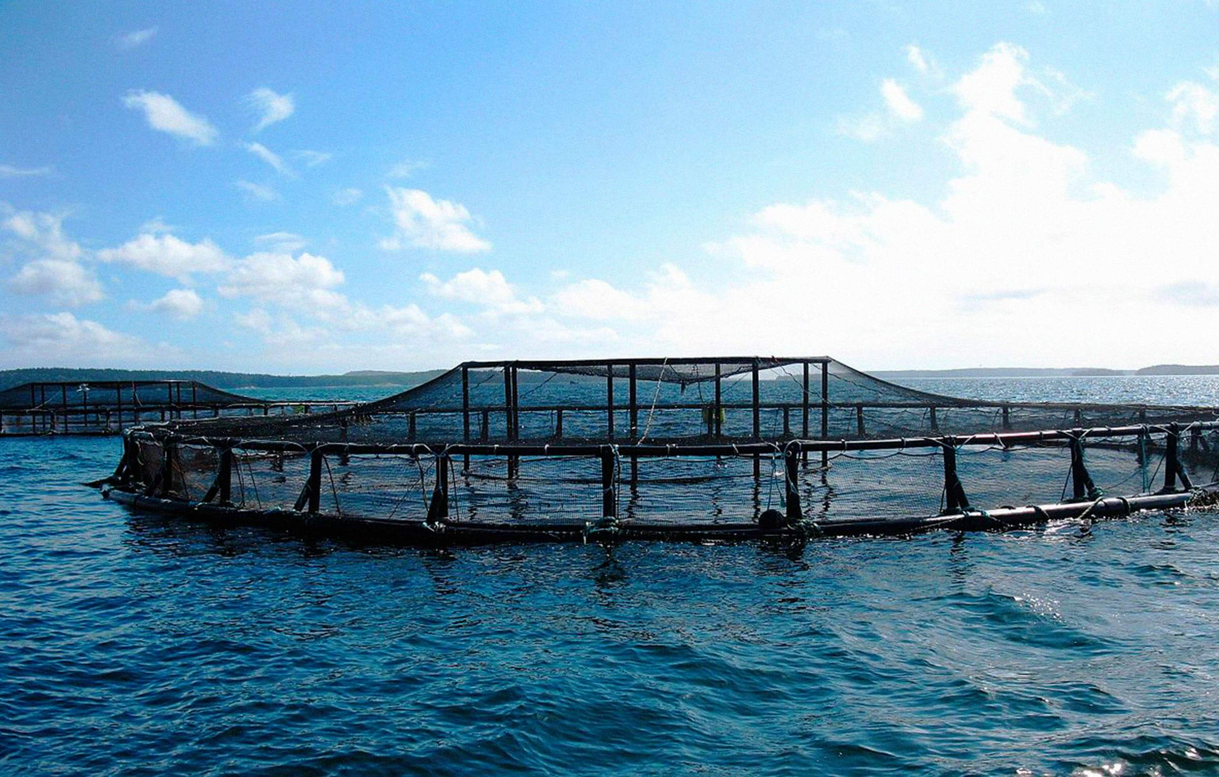 valorizacion-subproductos-acuicultura