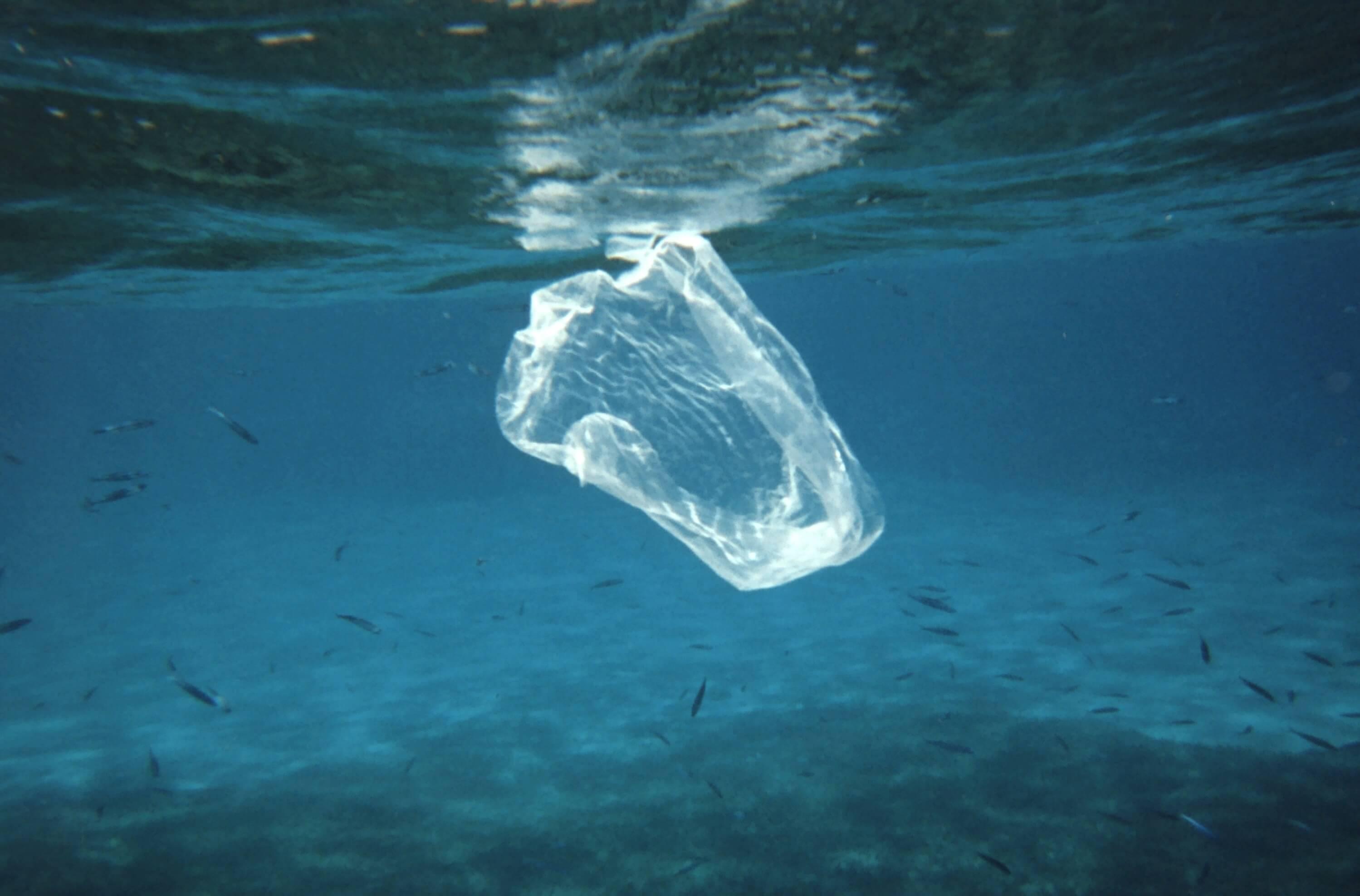 plastico en la mar