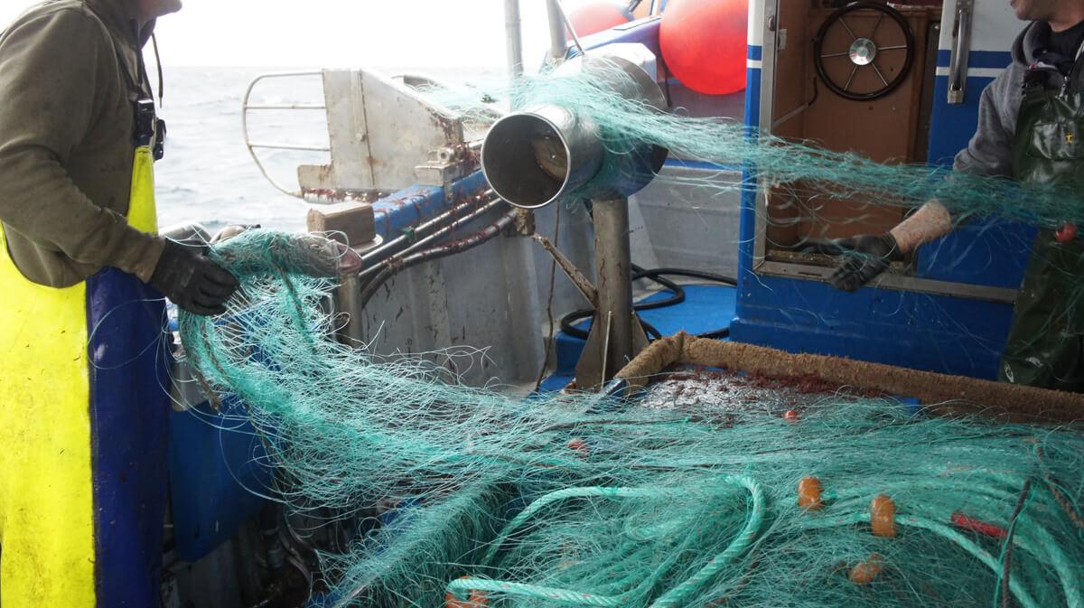 redes de pesca artesanal