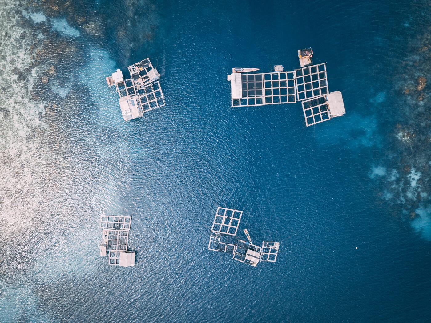 aquaculture_bluenet