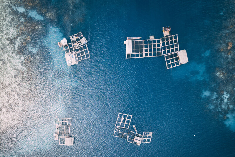 aquaculture-monitoring
