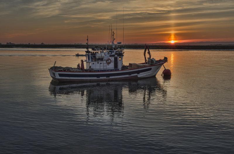 barco-pesca-sostenible