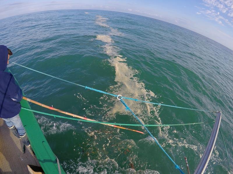 acciones de recogida de la basura marina en aguas costeras