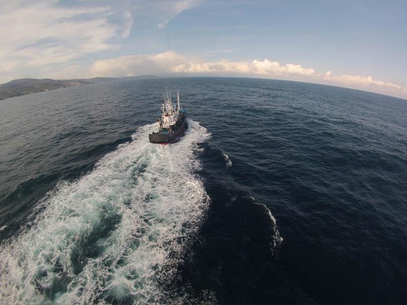 gestion sostenible de los recursos pesqueros