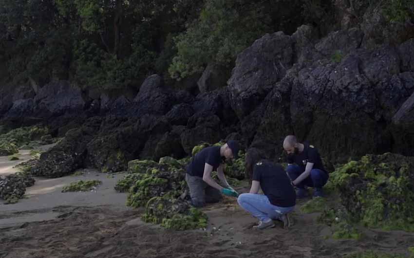 La importancia de los sedimentos marinos en la gestión de ecosistemas